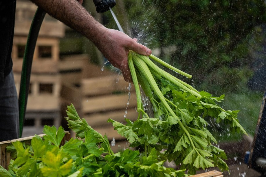 FRANCE – ECONOMY BUSINESS AND FINANCE – RISE IN REVENUE FOR LOCAL FOOD PRODUCERS DURING QUARANTINE DUE TO COVID 19